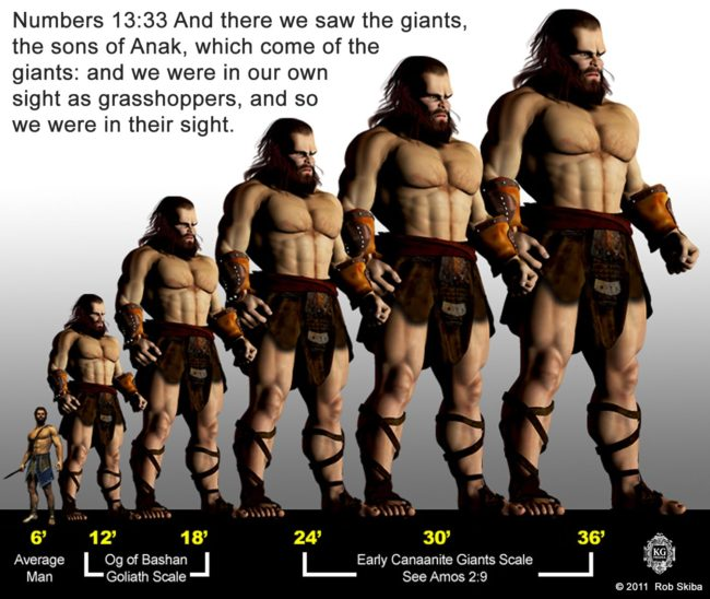 Nephilim Giant Bible study | How did Nephilim giants come back after the flood
